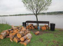 Территория базы отдыха ИВОЛГА (9)