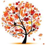 Осенняя Акция 1 База Иволга